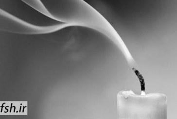 سخنرانی های ارزنده پیرامون مرگ توسط آیت الله توکل