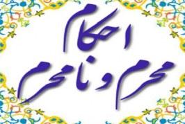 بیان احکام محرم و نامحرم توسط آیت الله مجتهدی