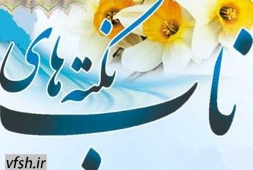 بیان نکته هایی ناب توسط حجت الاسلام فرحزاد